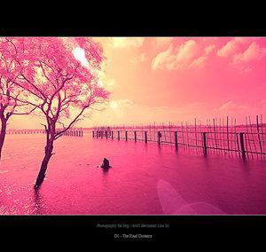 Coucher de soleil rose la vie en couleur oui sa se peut - Coucher de soleil rose ...